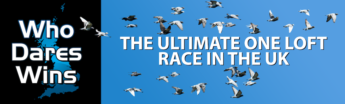 Who Dares Wins One Loft Race